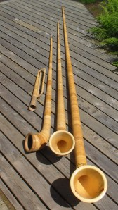 Some of the Swiss Alphorns played by Pioneer Brass: büchel in C, alphorn in Bb, alphorn in F, alphorn in low C.